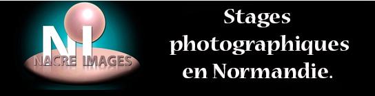 banniere-nacre-images