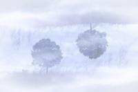 Les îles dans le ciel